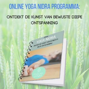 Mindfulness in Roermond