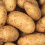 Een goedkope groothandel aardappelen